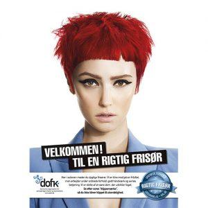 Kampagne plakat 0016